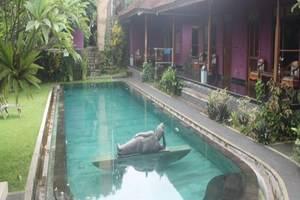 Rona Accommodation Bali - Kolam Renang