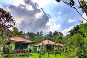 Happy Flower Resort Manado - Taman