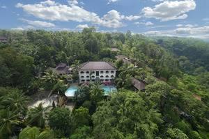 Ayung Resort Ubud - Pemandangan