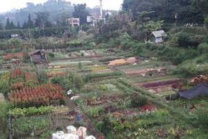 Villa Rumah Kayu Cottage Syariah Bandung - Eksterior