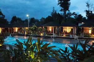 Green Tropical Village Hotel & Resort Belitung - Poll