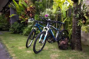 Natya Hotel Tanah Lot - sepeda
