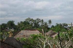 Desak Putu Putra Homestay Bali - Pemandangan