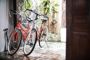 Iwabana Homestay Bali - Fasilitas Sepeda