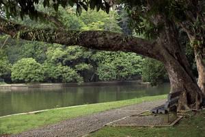 Amaris Padjajaran Bogor -