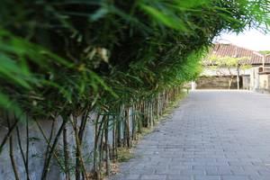 A Residence Bali - Masuk