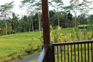 Villa Kemuning Ubud - Pemandangan