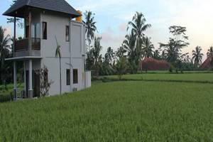 Villa Kemuning Ubud - Eksterior