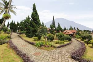 Royal Trawas Mojokerto - garden