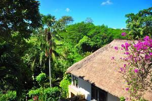 Alam Puri Art  Bali - Pemandangan Taman