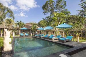 The Palm Grove