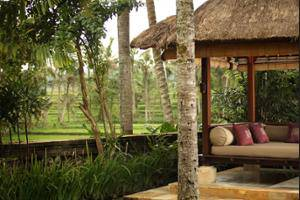 The Ubud Village Resort & Spa Bali - Terrace/Patio