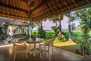 Uma Sari Rice Terrace