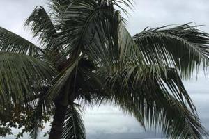 Wisma Pantai Citepus (Tepi Pantai) Sukabumi -