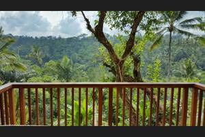 Padma Resort Ubud - Guestroom