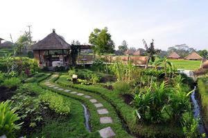 Wapa di Ume Bali - Tampilan Luar
