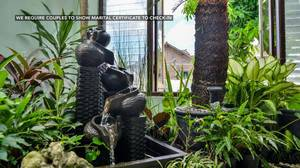 Ndalem Mantrijeron Hotel Yogyakarta - Taman