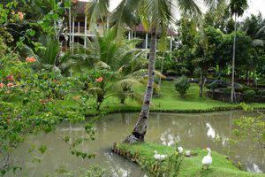 Hotel Deli River  Medan - Pemandangan taman