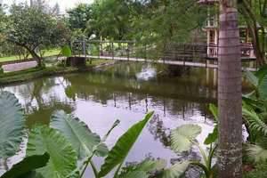 Aquarius Orange Resort Bogor - Kolam