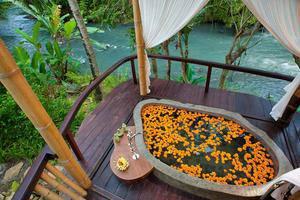 Fivelements Puri Ahimsa Bali - Spa