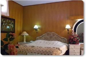 Safari Hotel Jember - Rooms