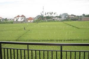 Pondok 828 Guest House Bali - Pemandangan