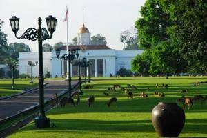 Bogor Valley Hotel - dekat ke kebun raya bogor