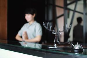 Hotel Zia Shiro I Shika  Jakarta - Resepsionis