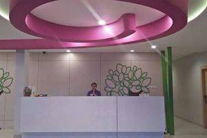 Sabrina Panam Hotel Pekanbaru - Lobby
