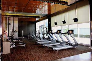 Novotel Bangka Hotel & Convention Centre Pangkalpinang - Sports Facility