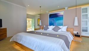 The View Villa Lovina Bali - Room