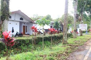 Lidjen Guest House