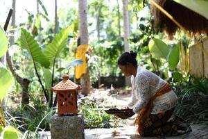 Ubad Retreat Bali - Eksterior