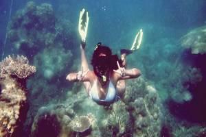 Arys Lagoon Karimunjawa Jawa Tengah - Snorkling