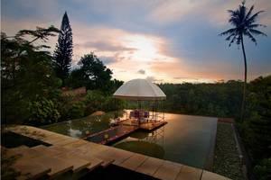 The Jungle Retreat Bali - Lobby Pond