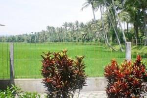 Hotel Rajasa  Magelang - Pemandangan
