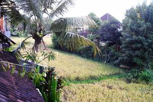 Villa Pecatu Ubud Bali - Villa Pecatu Ubud