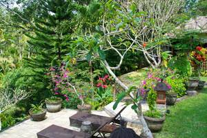 Bunga Permai Hotel Bali - Teras Kolam Renang