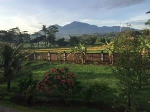Joglo Java Semarang - View from Hotel