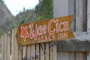 Waecicu Beach Inn Flores - Papan Nama