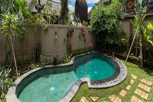 Mangosteen - Citrus Tree Bed and Breakfast Bali - Kolam Renang
