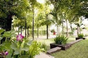 LPP Garden Hotel Yogyakarta - Taman