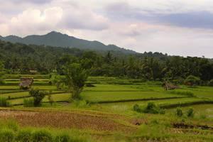 Puri Bagus Manggis Hotel Bali - Panorama