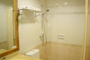 Hotel Anugerah Palembang - Bathroom SPR