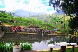 Resort Prima Coolibah Bogor - Kolam Pancing