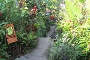 Villa Nirvana Bali - Sekeliling