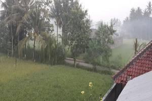 Omah Dusun Padi View Yogyakarta - Pemandangan