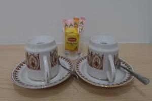 Vandolia Guest House Medan - Teh