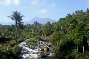 Taman Teratai Hotel Bogor - Eksterior