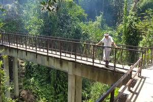 Ubud Heaven Sayan Bali - Sekeliling